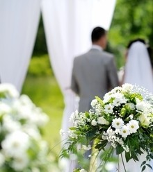 D6118f white wedding x220