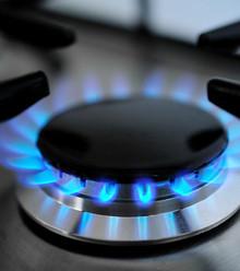 78d5ed domestic gases2 x220