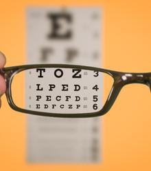D91205 eyesight x220