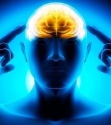 4f1e64 brain power x220