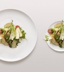 51657d dish size x220