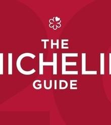 9d785c michelin guide x220