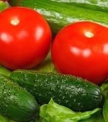 051997 pomidor x220