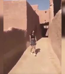 D340c6 saudi woman in mini x220