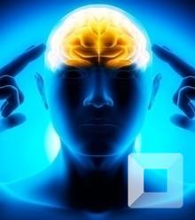 745041 brain power x220