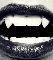 329e5d vampire x220