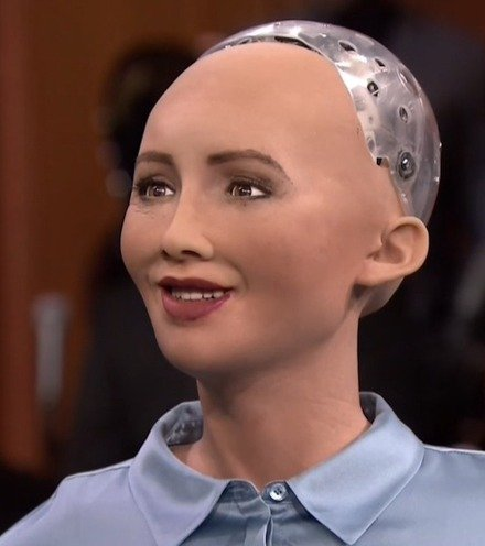 A41538 sofia robot x220
