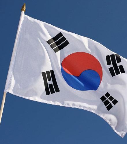 15dcd5 south korean flag x220