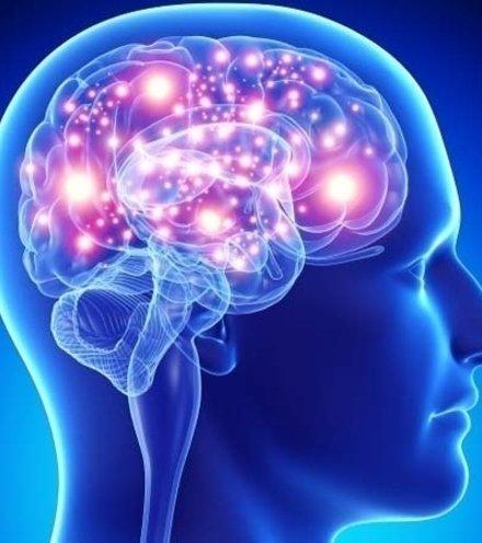 458fbd brain power x220