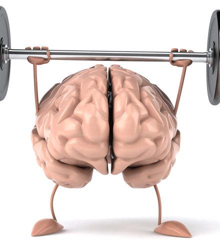 0fa48d brain exercise exercise brain x220