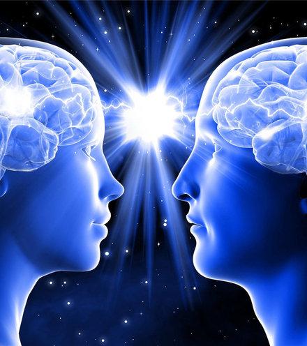 Db1e05 brain male female x220