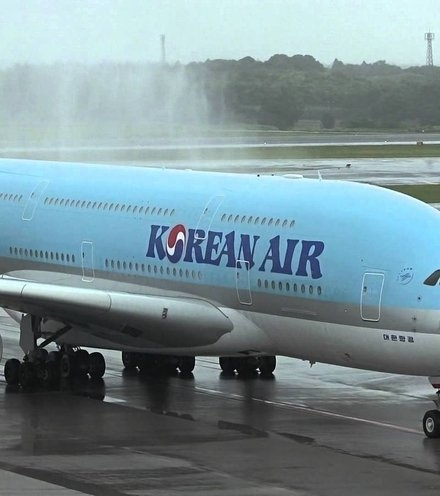 9b0e72 korean air plane x220