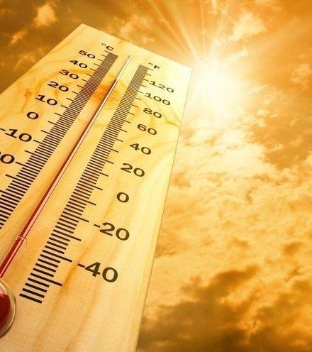 023365 heatwave x220