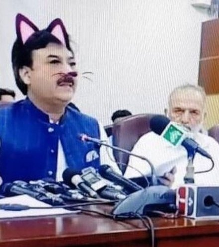 0957ee cat filter pakistani x220