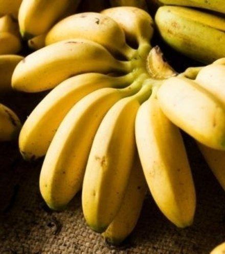 1da70d banana 620x350 61478592730 x220