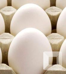 910f99 egg x220