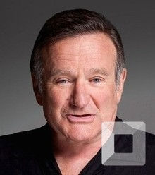 88effc robin williams sizzling image x220