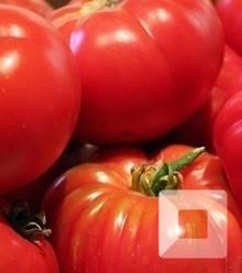 Be4de7 tomates02 x220