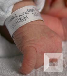 120595 75fbf0 cfcad7e081289980 baby hospital bracelet x800 x220