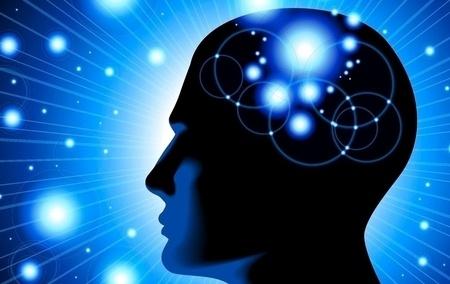 63d3ac brain h450