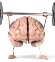 3355fa exercise brain x220
