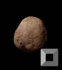 56328b 160127131550 kevin abosch potato exlarge 169 x220