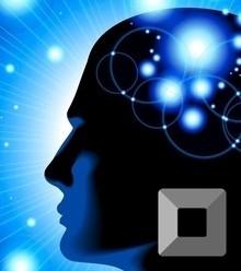 Ecf00b brain x220
