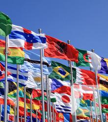 D94fbd world flags x220