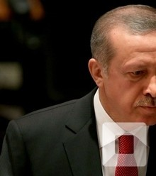 D3363b erdogan 2 x220