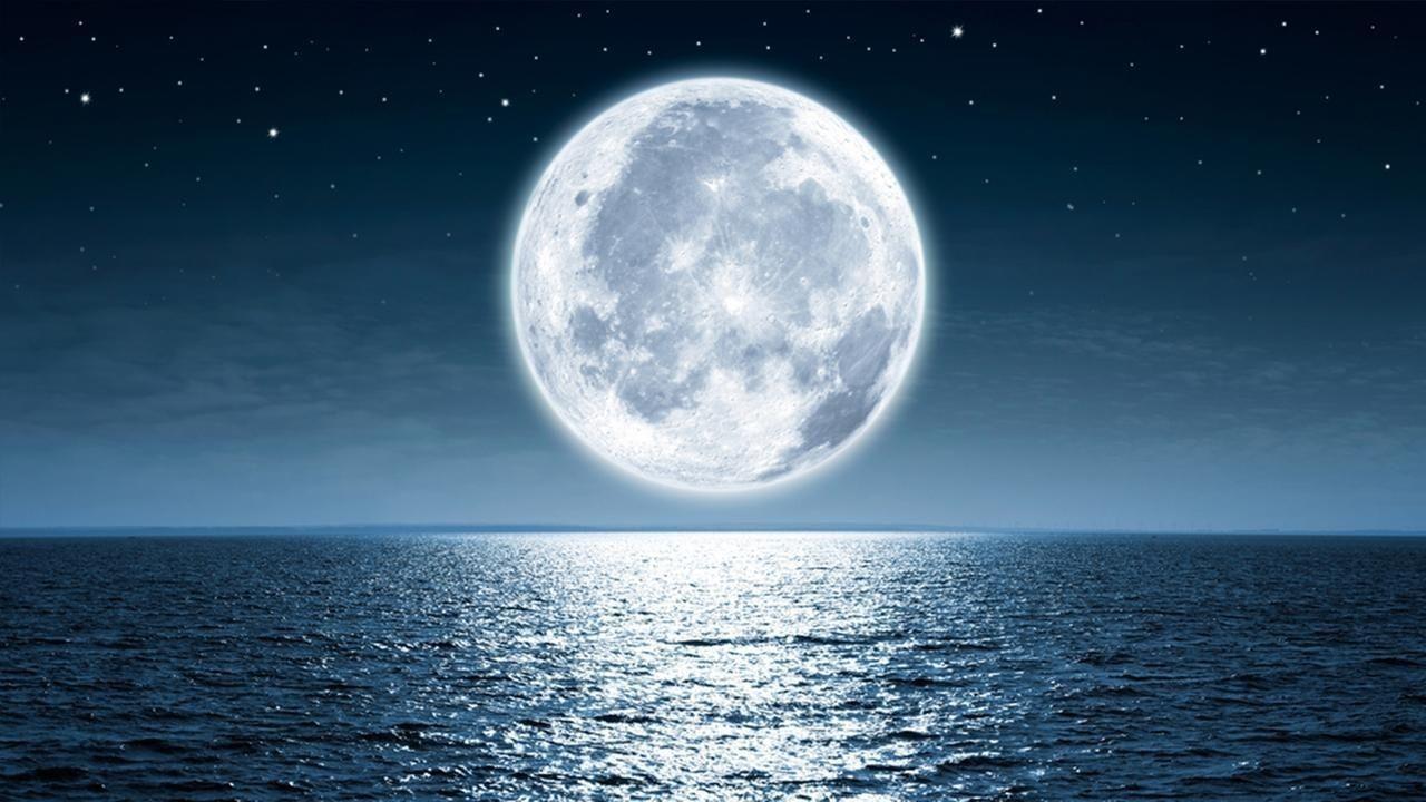 """Сарыг үүсгэсэн тэнэмэл гараг дэлхийд амьдрал """"бэлэглэжээ"""""""