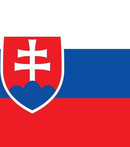 Fea2d6 900px flag of slovakia svg x220