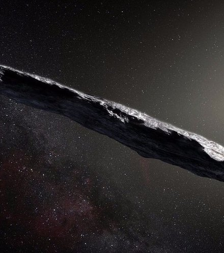 387426 interstellar asteroid x220