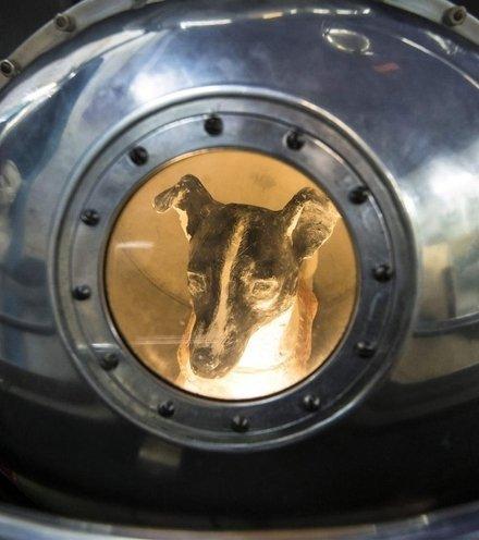 4dedb1 laika dog effigy x220