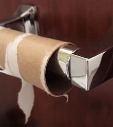 309328 toilet paper end x220