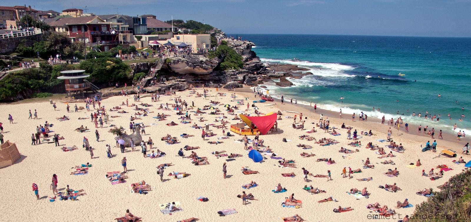 Сидней хотод сүүлийн 80 жилийн хугацаанд тохиолдоогүй их халуун болжээ