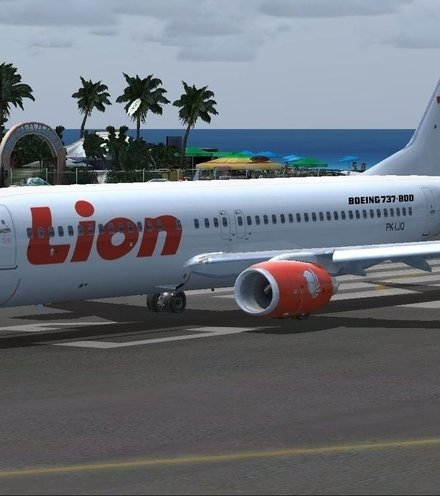 3a28be indonesian plane x220
