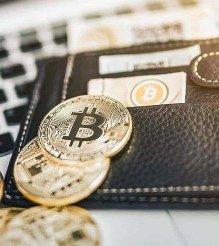 E57bca bitcoin wallet x220