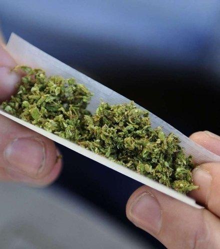 Bd8f5e marijuana x220