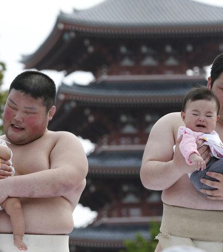6ecc17 japan babies x220
