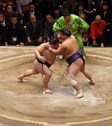 07ad76 sumo ring x220