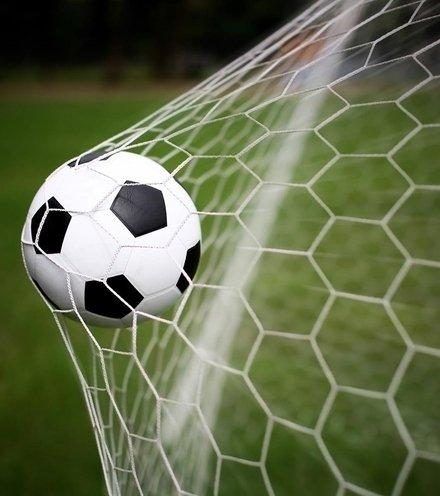 147717 football goal scored x220