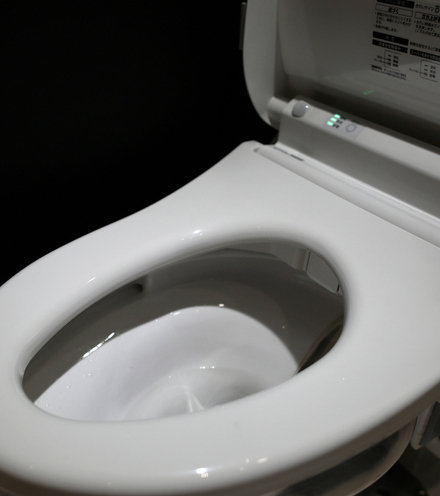 E48145 japan toilets x220