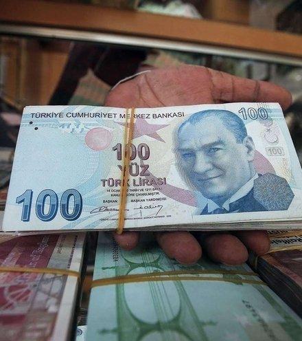 3f69d7 turkish lira x220