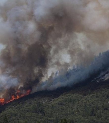 C484b4 wildfire risk 1 x220