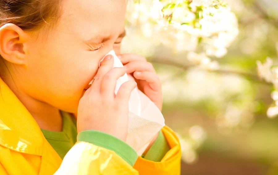 6a316a alergias comunes ninos h450