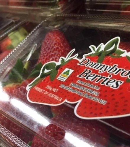 65f139 australia strawberry x220