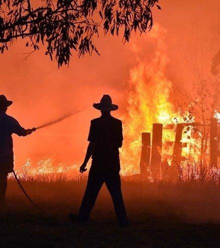 1ed788 australia bushfire x220