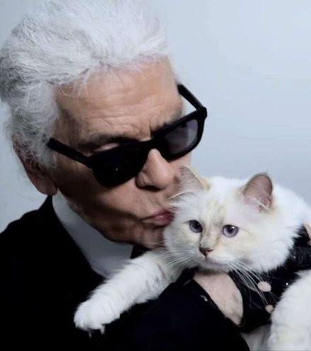 B863bc lagerfeld and cat x220