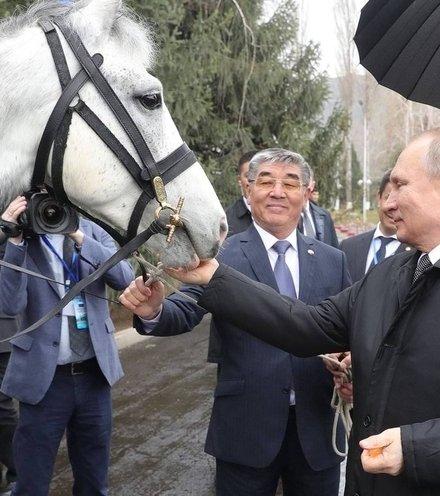 371322 putin kyrgyzistan x220