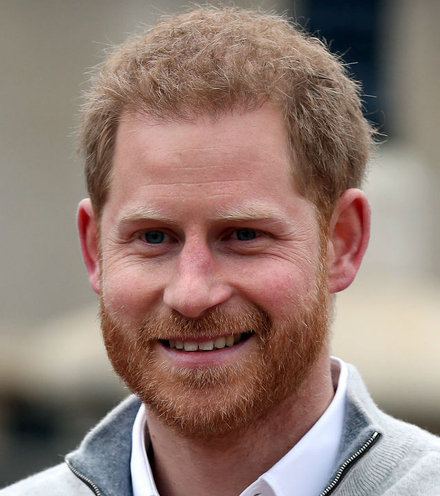 Ec3336 prince harry x220